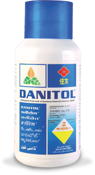 dantol best for pink ballworm