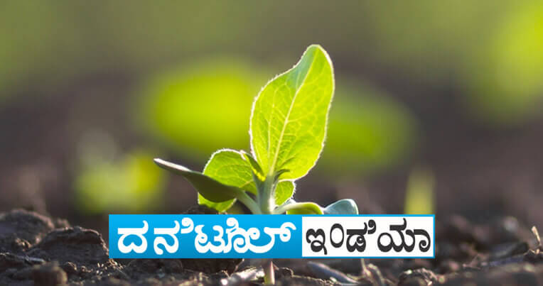 Sumitomo Danitol Website Banner for Mobile kannad 1