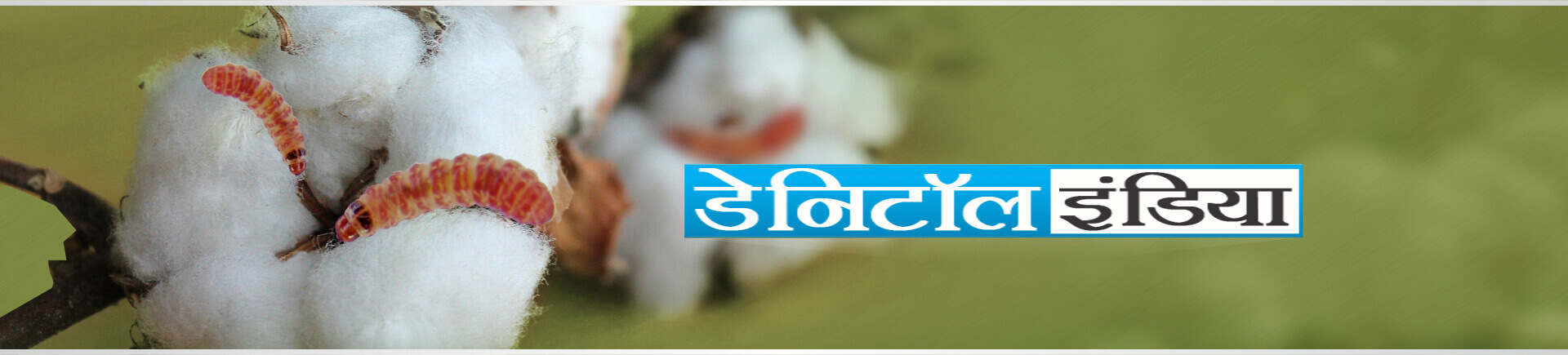 Sumitomo Danitol Website banner marathi
