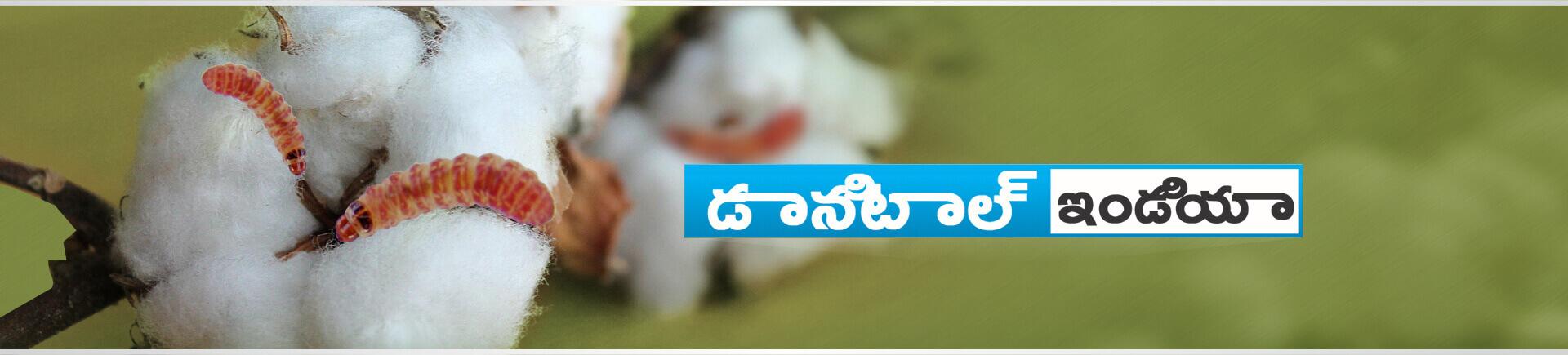 Sumitomo Danitol Website banner telugu